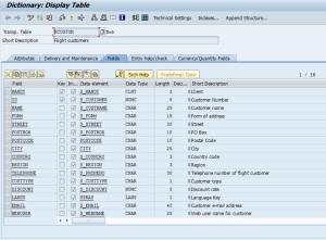 sap-data-table