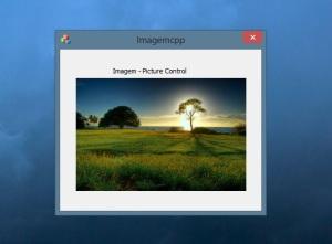 picturecontrol-programa
