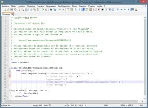 Notepad++ - Python