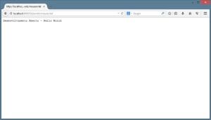 Navegador Web