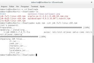 Instalando o SQL Developer