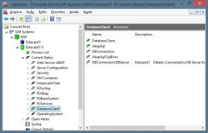 SAP - Servidor de Aplicação - e Banco de dados - NetWeaver/MaxDB