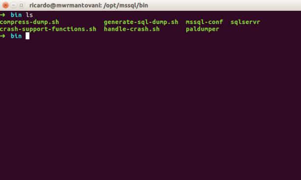 mssql-linux-install-1