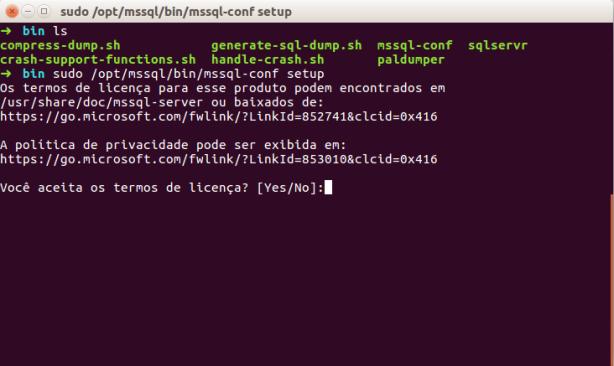 mssql-linux-install-2-licensa
