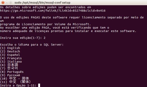 mssql-linux-install-4-idioma
